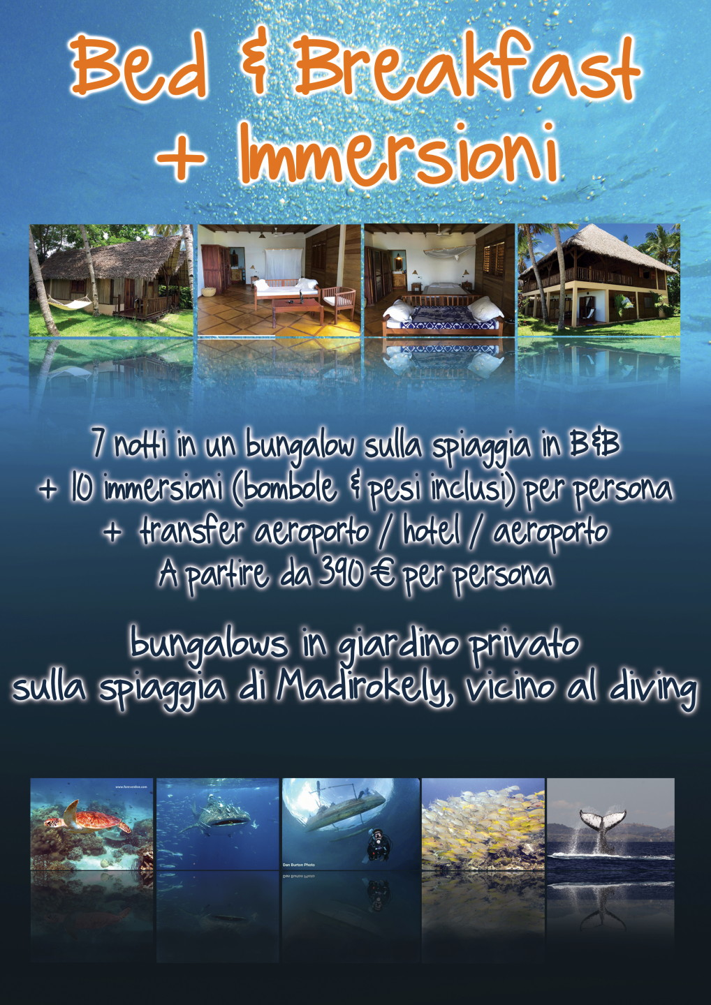 forever dive centro immersioni nosy be