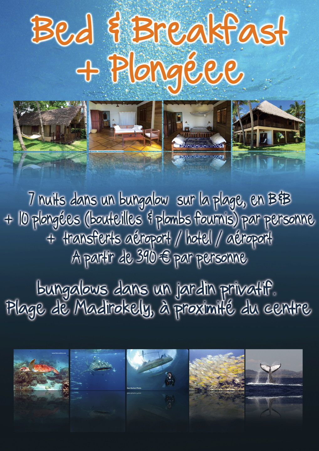 forever dive club de plongee nosy be
